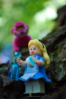 Disney LEGO Alice in Wonderland & Cheshire Cat