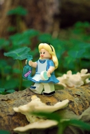 Disney LEGO Alice in Wonderland