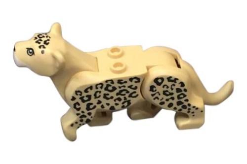 Leopard01