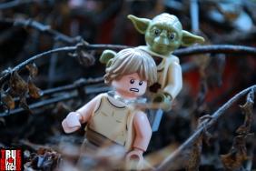 LEGO Luke and Yoda