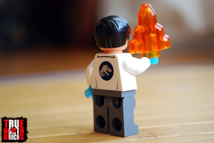 Rear view of the Dr. Wu Minifigure.